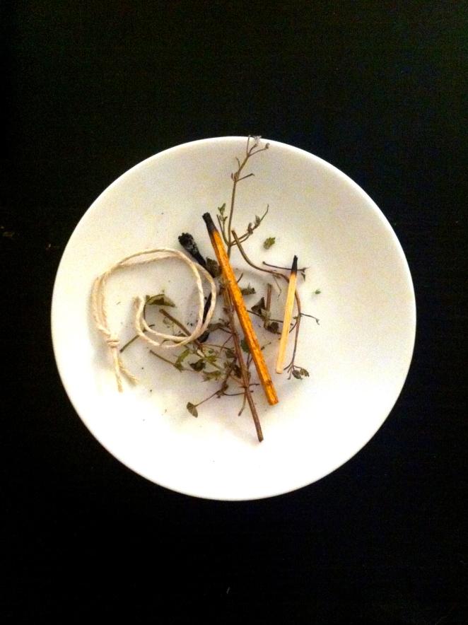 trash plate